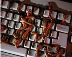 Nikt nie powiedział, że robaki się nie mogą zalęgnąć w klawiaturze ;)